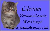 Glevum Persians & Exotics